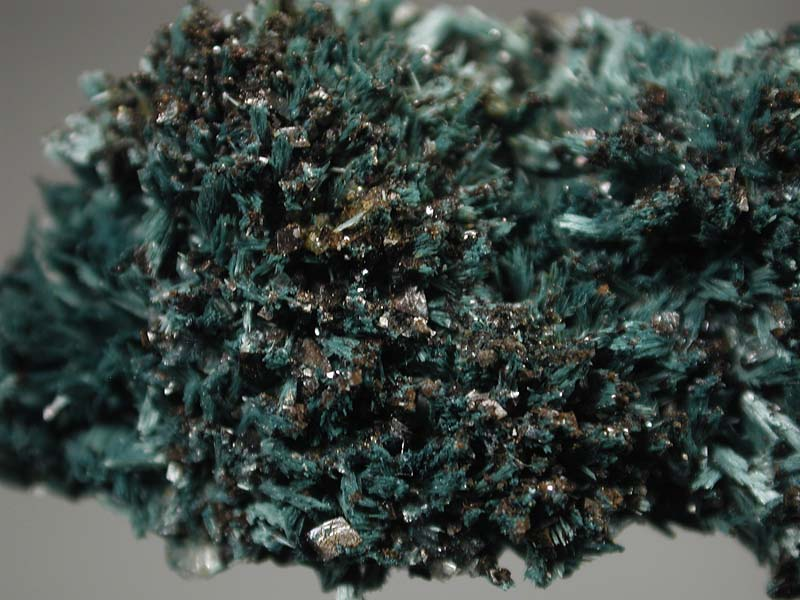 Gormanite, Siderite, Pyrite