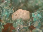 Leadhillite, Linarite, CerussiteSecondary Minerals, Various Locations, Page Two