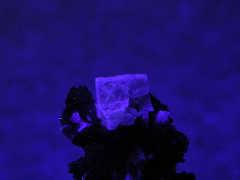 Leucophanite, Serandite, Catapleiite