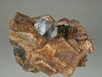 Titanite, Microcline, KatophoriteGrenville, Gibson Road East, Titanite, Microcline, Fluorapatite, Phlogopite