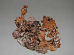 Copper, TenoriteCopper, Keweenaw Peninsula, Michigan, USA