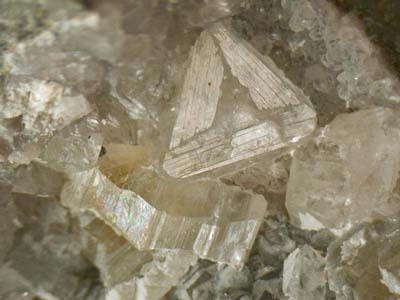 Cryolite, Weloganite