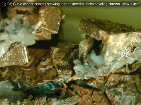 Fig 23) Cubic copper crystals showing tetrahexahedral faces beveling corners. View 1.0cm