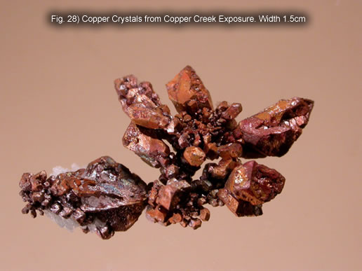 Fig. 28) Copper Crystals from Copper Creek Exposure. Width 1.5cm