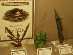 Recent Activities -Tucson Gem and Mineral Show, 2012 -A Little Bit of It!, Page Two