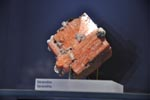 Recent Activities -ROM Mineral Gallery